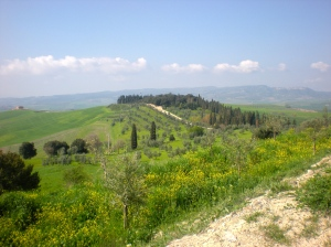 The view from the hilltop winery of Tenuta Vitanza in Montalcino.